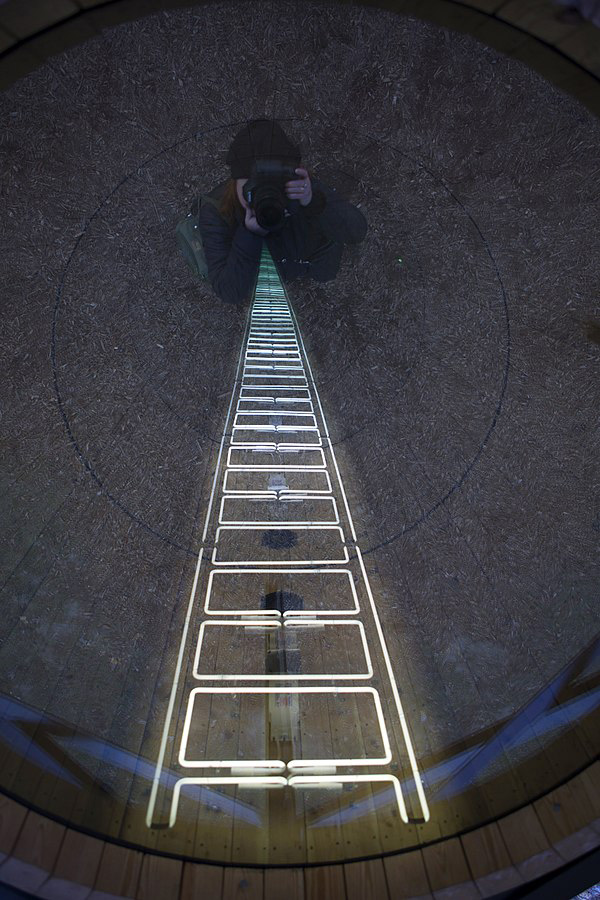 Ivan Navarro Ladder